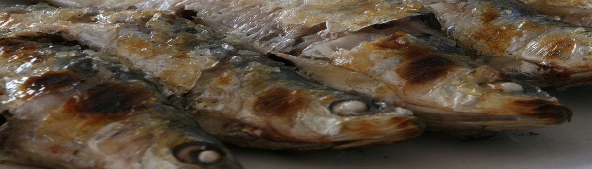 encabezado-carnes-pescados