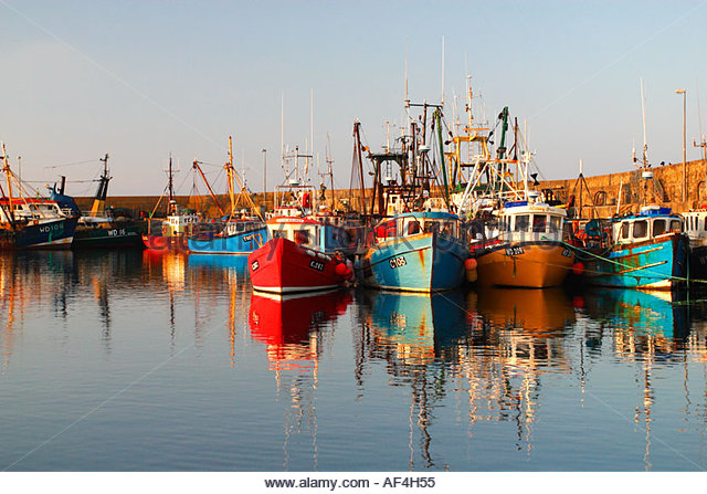 Barcos-de-pesca-sardina