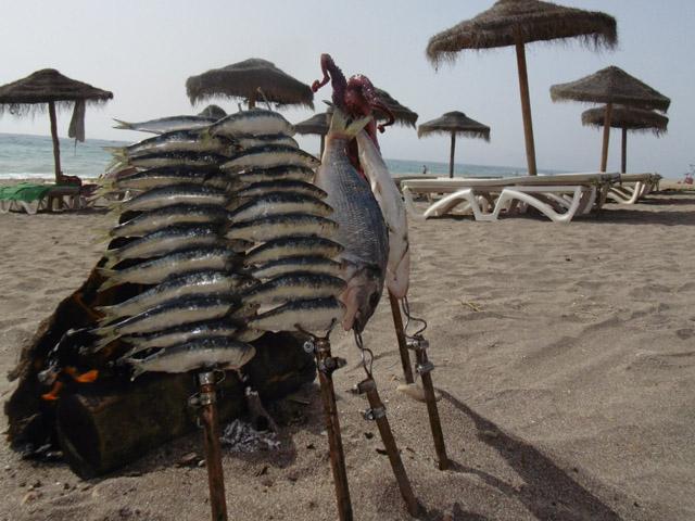 el cuento de las 7 sardinas espetos en la playa mojacar
